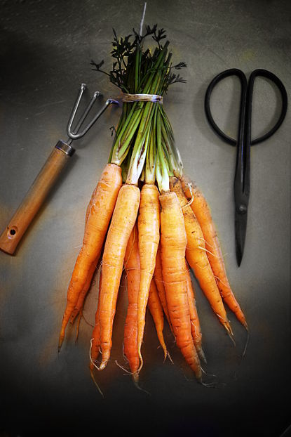 carottes_1web