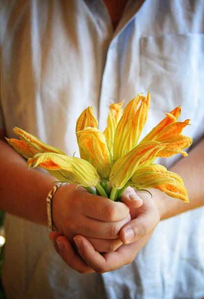 fleurscourgette_3web