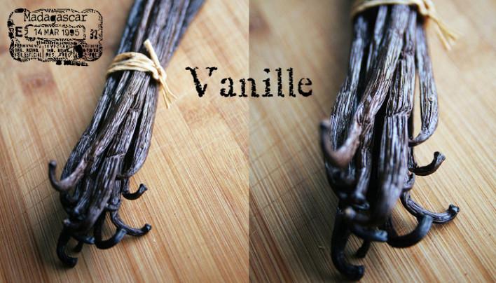 Vanille, vanille…dis-moi quelle gousse est la plus belle