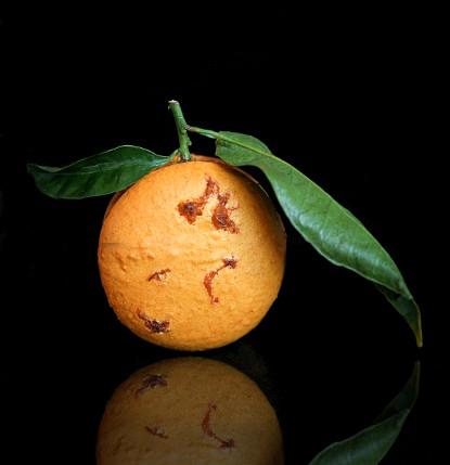 macaron_clementine_10web