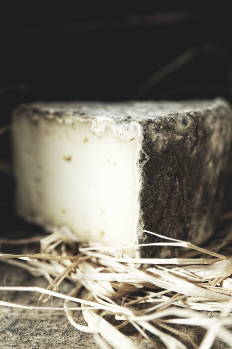 fromage_1web